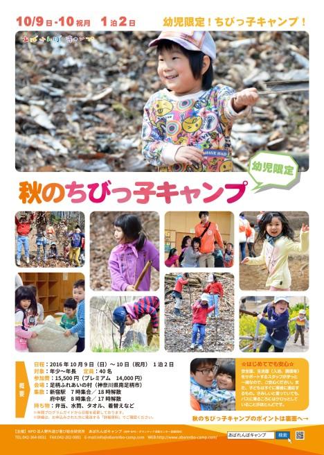 20160628秋のちびっ子キャンプ WEB