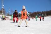 ski17