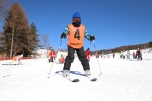 ski19