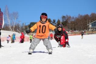 ski24