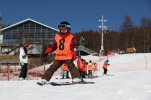 ski34